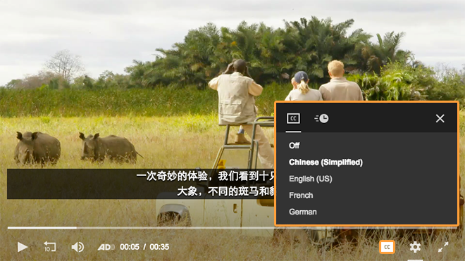 Multi-Language Captions Player